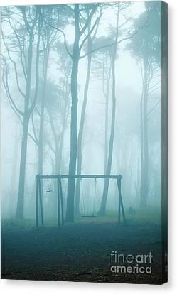 Foggy Swing Canvas Print by Carlos Caetano
