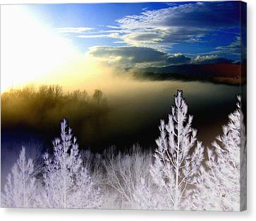 Foggy Winter Sunset Canvas Print by Will Borden