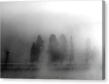 Foggy Yellowstone Canvas Print by Kimberly Oegerle