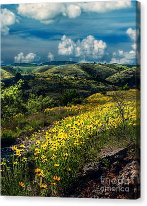 Follow The Path, Vertical Canvas Print by Tamyra Ayles