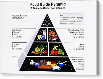 Food Pyramid Canvas Print by Photo Researchers