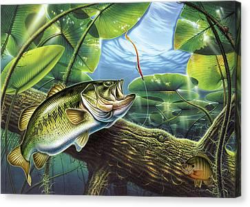 Fooled Again Bass II Canvas Print by JQ Licensing