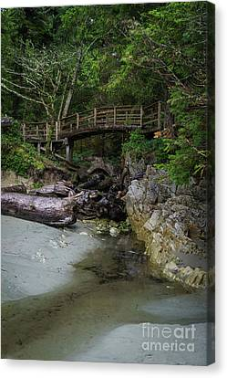 Foot Bridge At Tofino Canvas Print by Carrie Cole