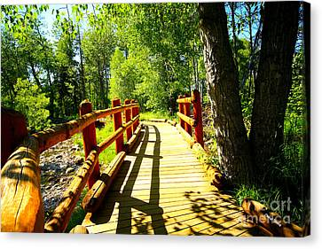 Foot Bridge Canvas Print by Cheryl Young