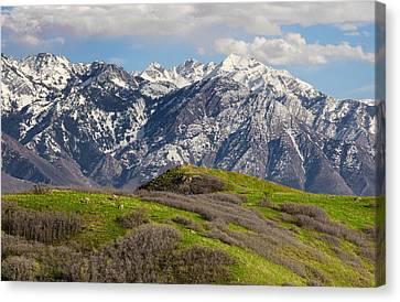 Foothills Above Salt Lake City Canvas Print by Utah Images