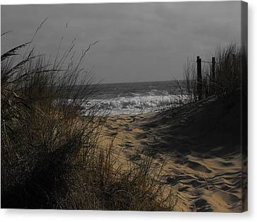 Footprints In Winter Sand Canvas Print by Kathryn Blackman