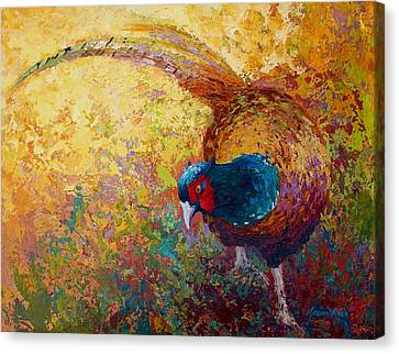 Foraging Pheasant Canvas Print by Marion Rose