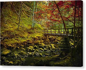 Forbidden Bridge  Canvas Print by Svetlana Sewell