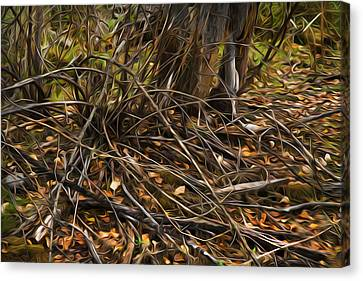 Forest Floor Canvas Print by Theresa Tahara