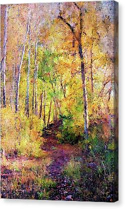 Forest Path Canvas Print by Chuck Underwood