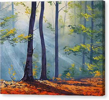 Forest Sunrays Canvas Print by Graham Gercken