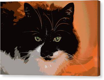 Forever Home Canvas Print by Dianne Cowen