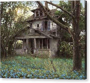Forget-me-not Canvas Print by Doug Kreuger
