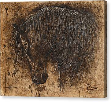 Forgiven Canvas Print by Paula Collewijn -  The Art of Horses