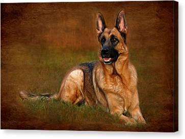 Forrest The German Shepherd Canvas Print by Angie Tirado