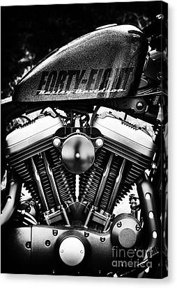 Forty Eight Canvas Print by Tim Gainey