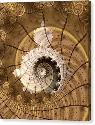 Fossil Canvas Print by David April