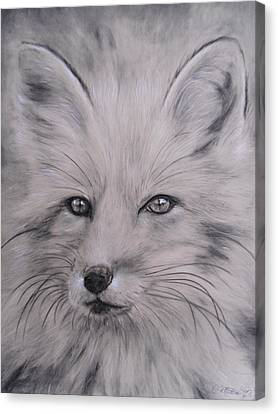 Fox Canvas Print by Adrienne Martino