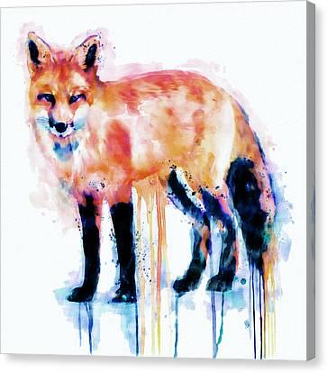 Fox  Canvas Print by Marian Voicu