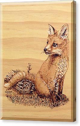 Fox Pup Canvas Print by Ron Haist