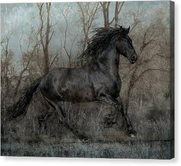Free II Canvas Print by Jean Hildebrant