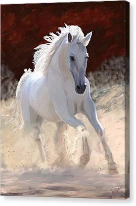 Free Spirit Canvas Print by James Shepherd