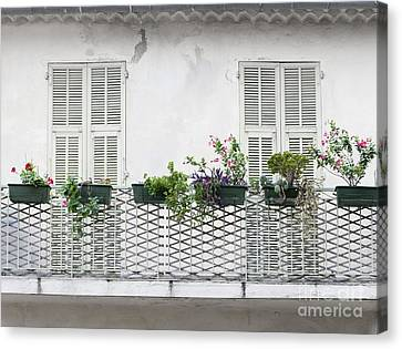 French Balcony With Shutters Canvas Print by Elena Elisseeva
