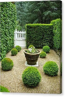 French Garden V Canvas Print by Wendy Uvino