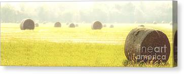 Fresh Hay In The Morning Canvas Print by Tamyra Ayles