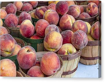 Fresh Peaches At The Market Canvas Print by Teri Virbickis