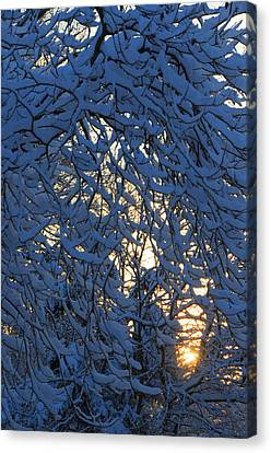 Fresh Snow At Sunrise Canvas Print by Dimitri Meimaris