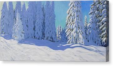 Fresh Snow  Morzine  France Canvas Print by Andrew Macara