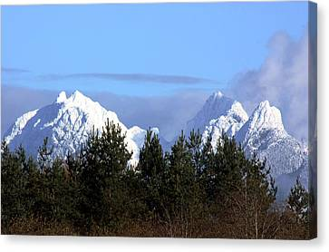 Fresh Snow On Golden Ears Canvas Print by Barbara  White