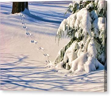 Fresh Snow Prints Canvas Print by Christopher Arndt