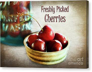 Freshly Picked Cherries Canvas Print by Darren Fisher