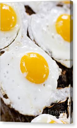 Fried Eggs Canvas Print by Jorgo Photography - Wall Art Gallery