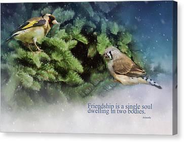 Friendship Is - Bird Art Canvas Print by Jordan Blackstone