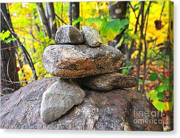 Frog Cairn Canvas Print by Catherine Reusch Daley
