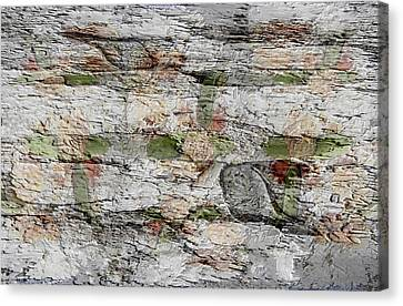 From Leftovers To Fish Fossils Canvas Print by Lorai Wilson