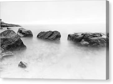 From The Fog Canvas Print by Chad Tracy