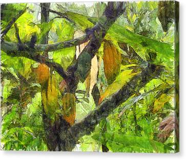 Fruits Hanging Down From A Branch Canvas Print by Ashish Agarwal