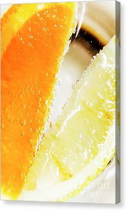 Fruity Drinks Macro Canvas Print by Jorgo Photography - Wall Art Gallery