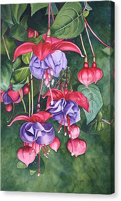 Fuchsia Trio Canvas Print by Tina  Sander