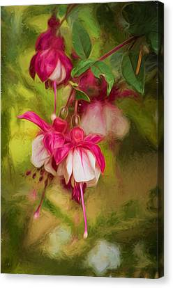 Evening Light - Digital Painting Canvas Print by Marilyn Wilson