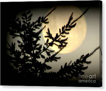 Full Moon Canvas Print by Joyce Woodhouse