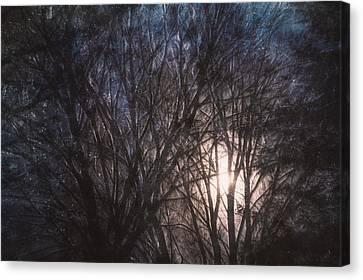 Full Moon Rising Canvas Print by Scott Norris