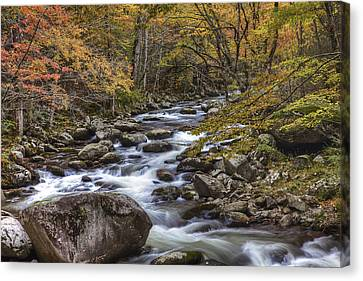 Fun With The Colors Canvas Print by Jon Glaser