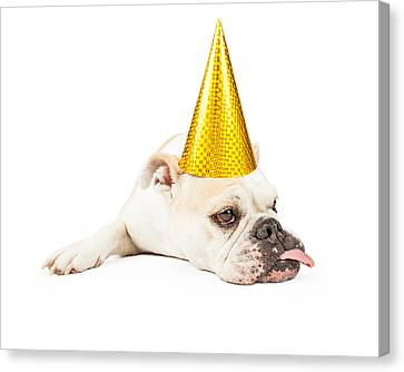 Funny Bulldog Wearing A Yellow Party Hat  Canvas Print by Susan Schmitz