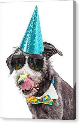 Funny Dog Eating Birthday Cake Canvas Print by Susan Schmitz