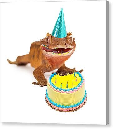 Funny Gecko Lizard Eating Birthday Cake Canvas Print by Susan Schmitz